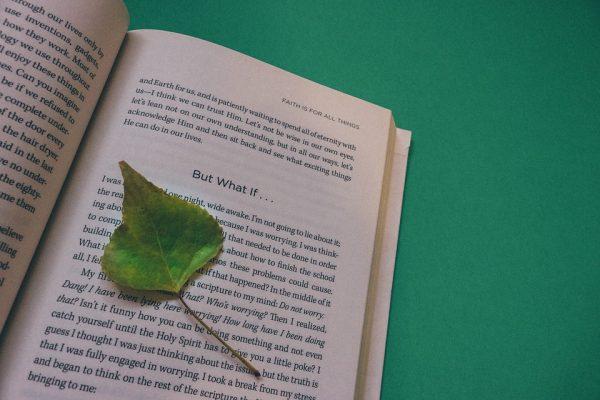 book-912727_960_720