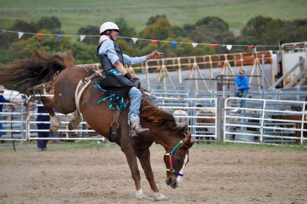 cowboys-1248632_960_720